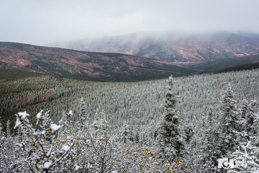 Alaska_MD_0737.jpg