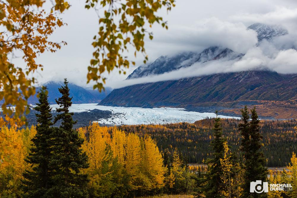 Alaska_MD_1119.jpg