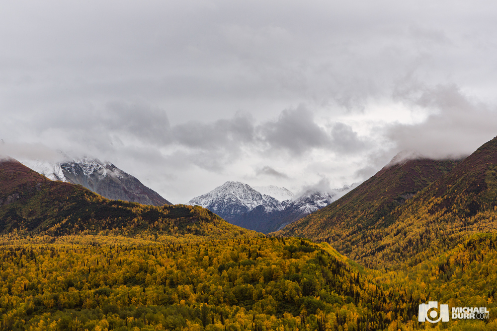 Alaska_MD_1359.jpg