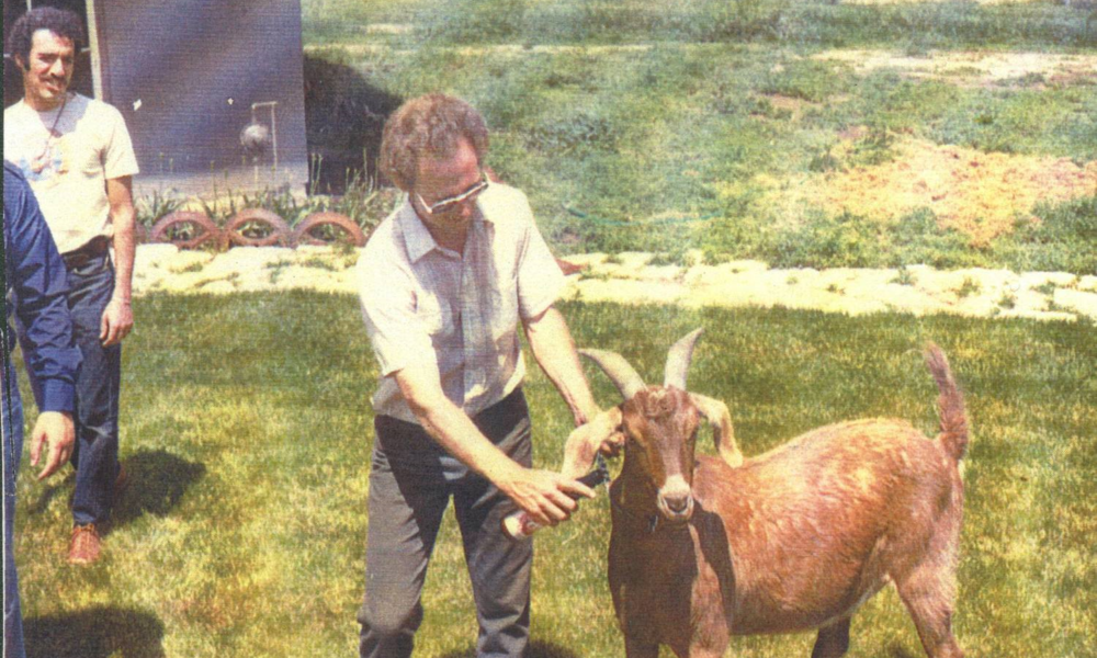 The Goatshed  -  1979