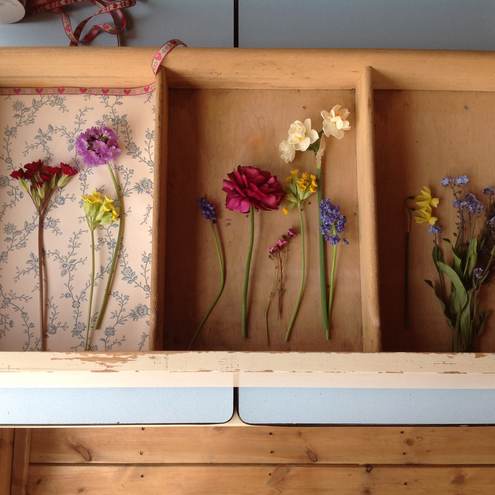 01May_Drawers_of_Flowers.jpg