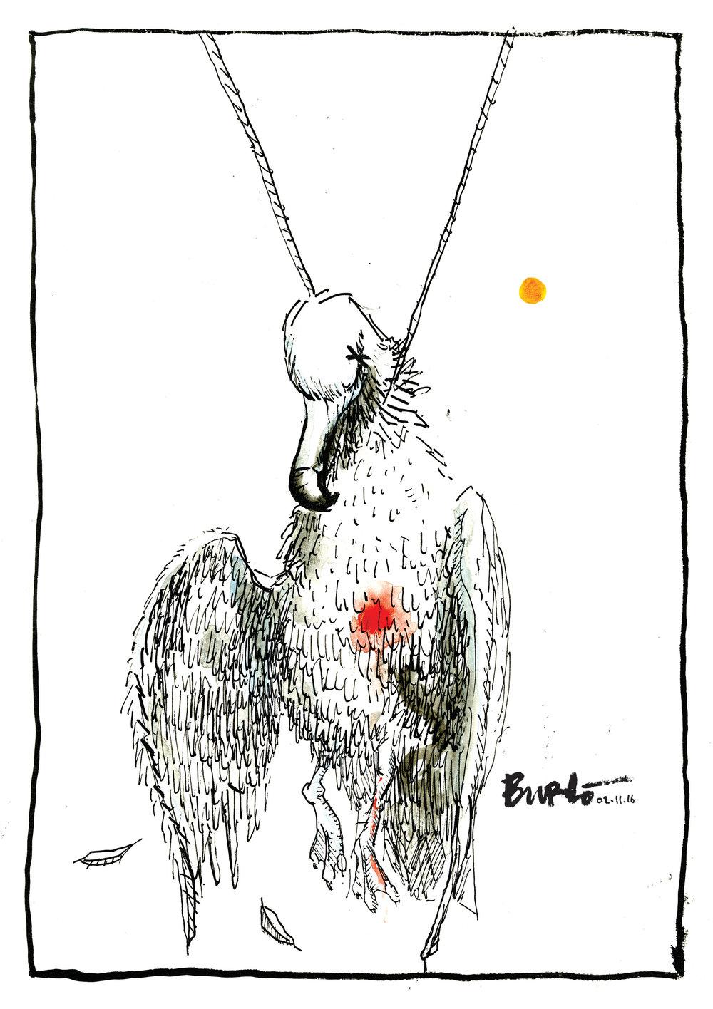 The albatross around our necks