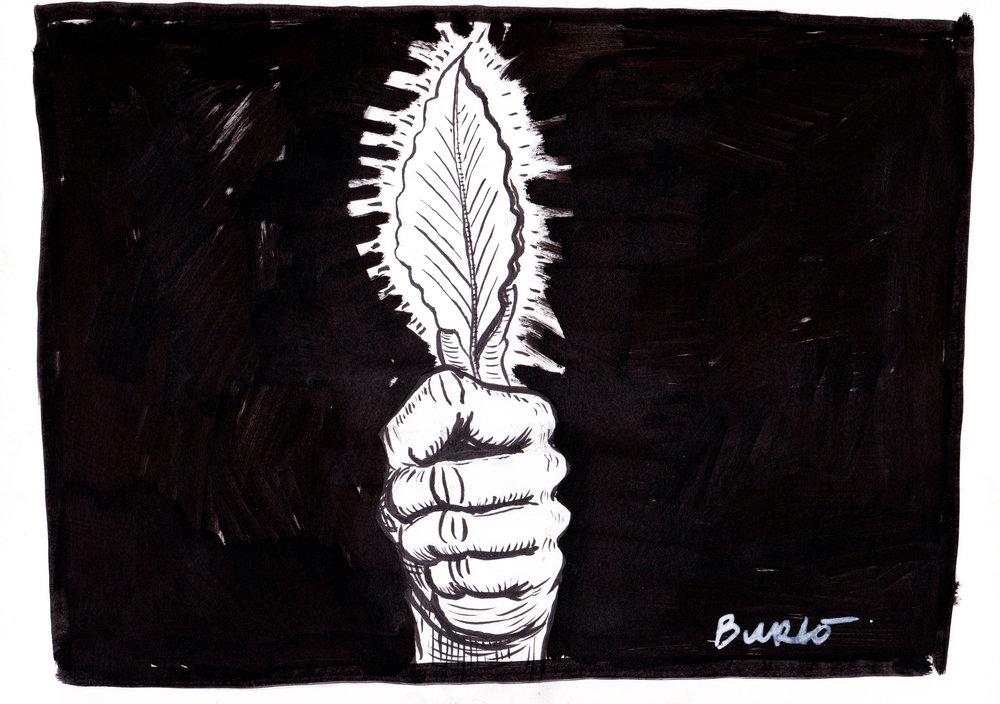 27.10.17. Bay leaf|(LR).jpg