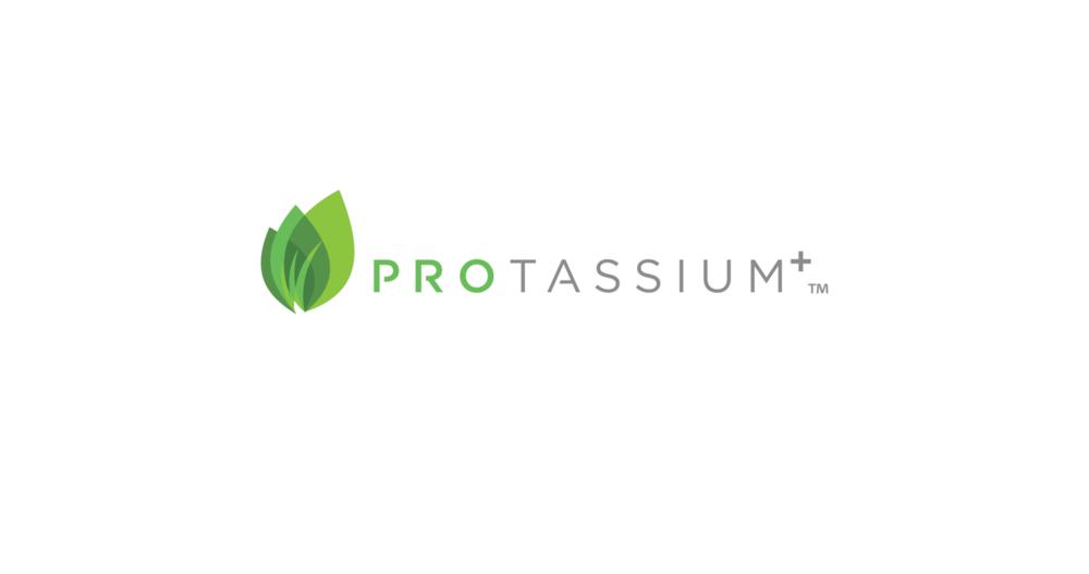protassiumplus-Logo-nonvector.png