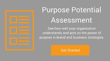 Purpose Marketing Potential Assessment