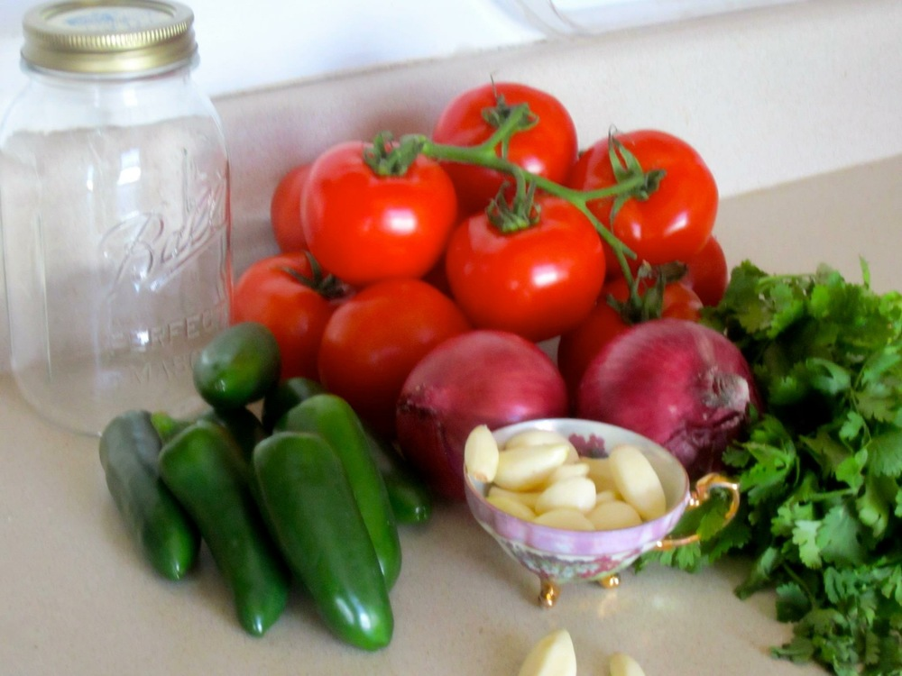 salsa tableau.JPG
