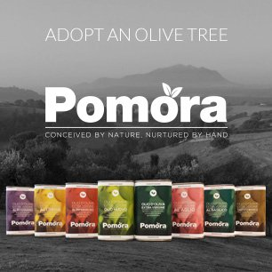 Adopt an olive tree and enjoy delicous oil year-round!