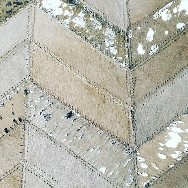 New floor rug selections at Bel Mondo.