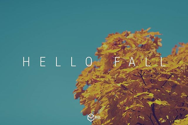 We're excited about the change of seasons! What's your favorite thing about Fall? #eq1re #fall #autumn #California #SiliconValley