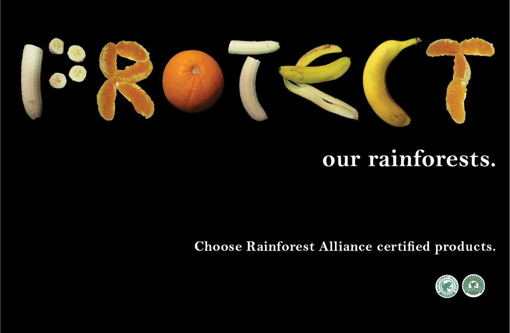 S2012_RainforestPosters-02.png