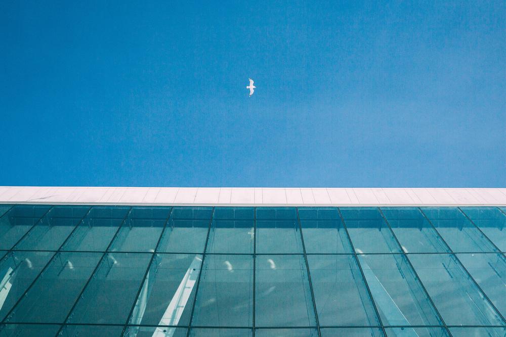 30for30_Oslo-195.jpg