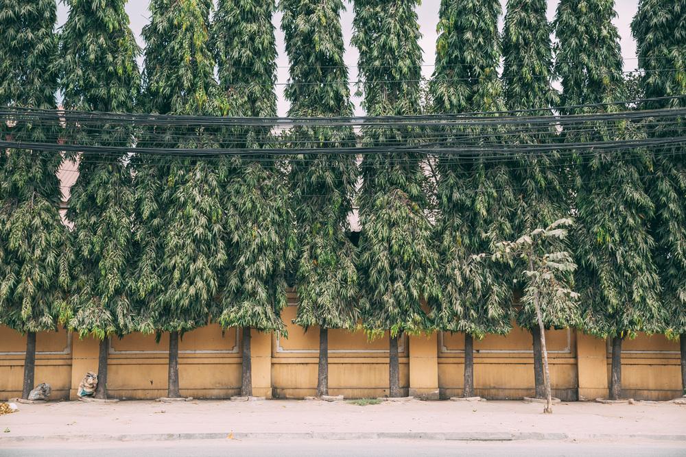 30for30_Cambodia-456.jpg