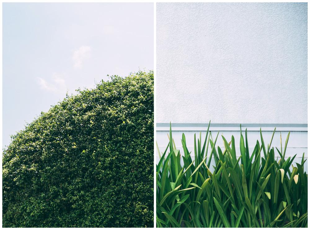 30for30_Cambodia-3.jpg