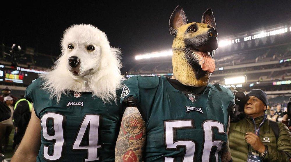 eagles-dog-masks.jpg