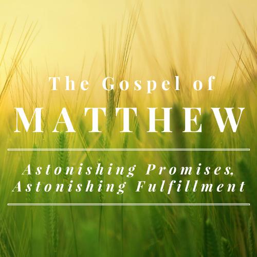 Matthew Series.png
