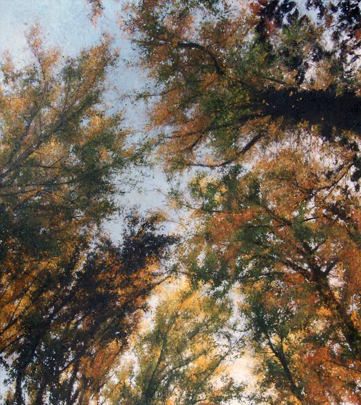 """First Fall, Paris Mountain"", 2015-16, oil on canvas, 27"" x 24"""