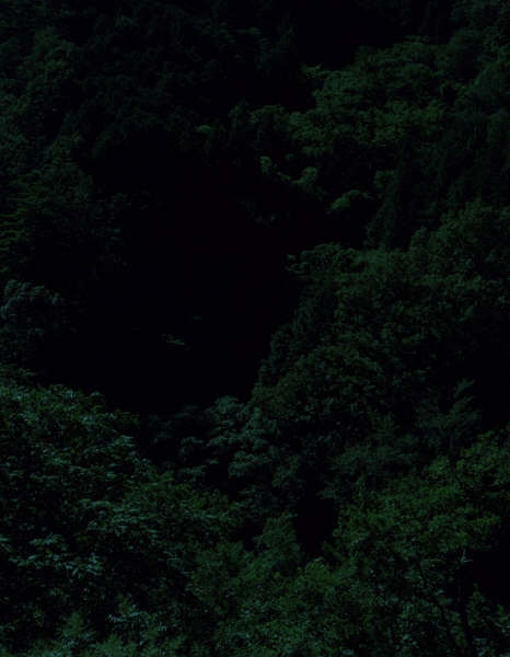 firmamente :     From the   Dark Forest   Series by  Keita Sugiura