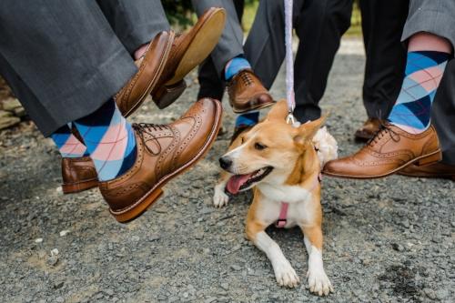 Photo Credit:  Emily Clack Photography   Socks:  Bold Socks