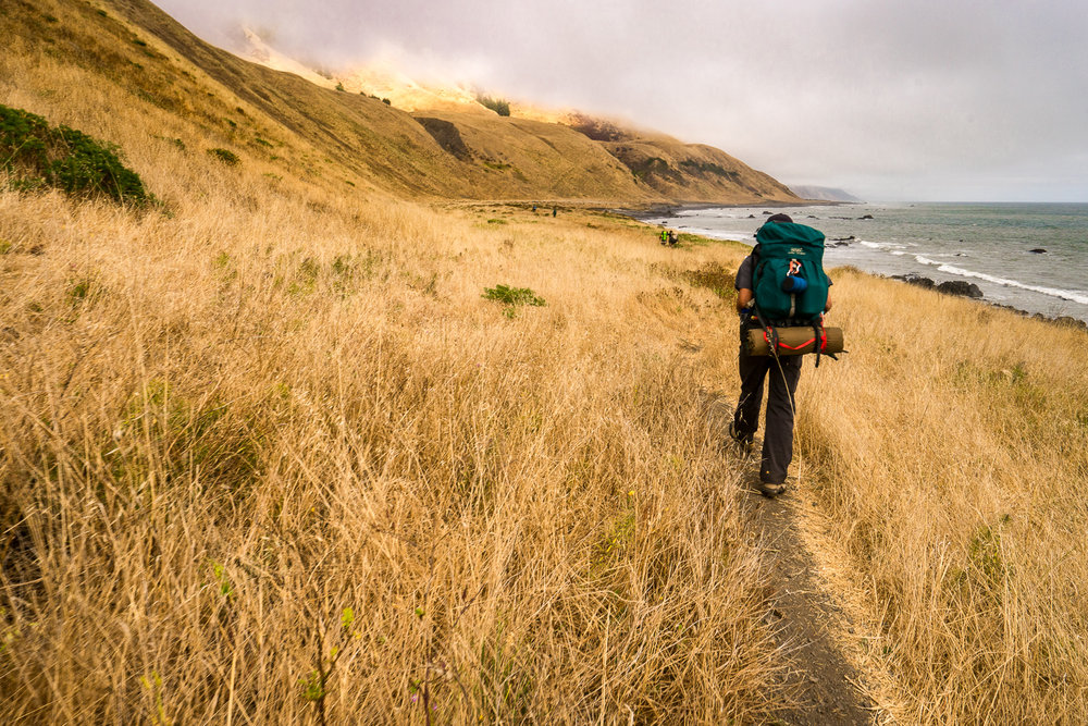2016_August_19-Lost_Coast_Trail-26819.jpg