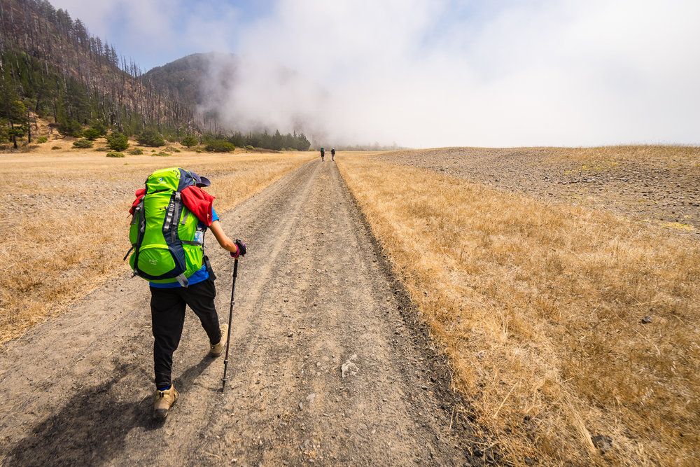 2016_August_20-Lost_Coast_Trail-26917.jpg