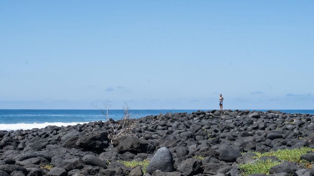 Galápagos-02859.jpg
