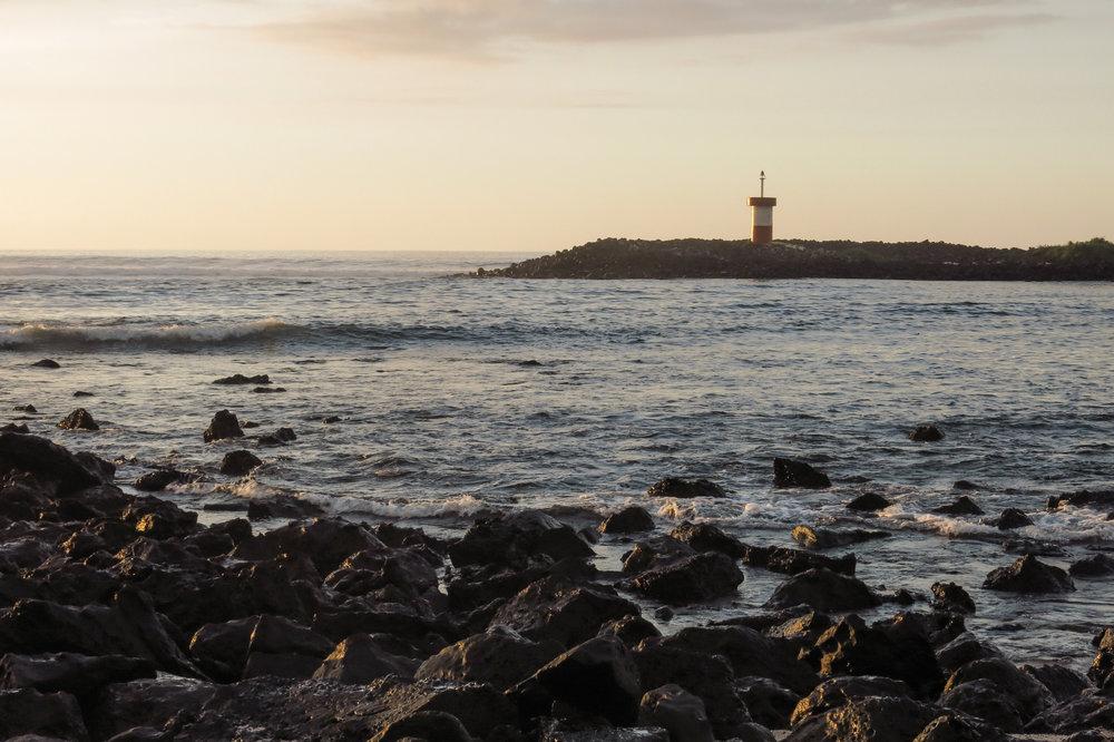 Galápagos-0324.jpg