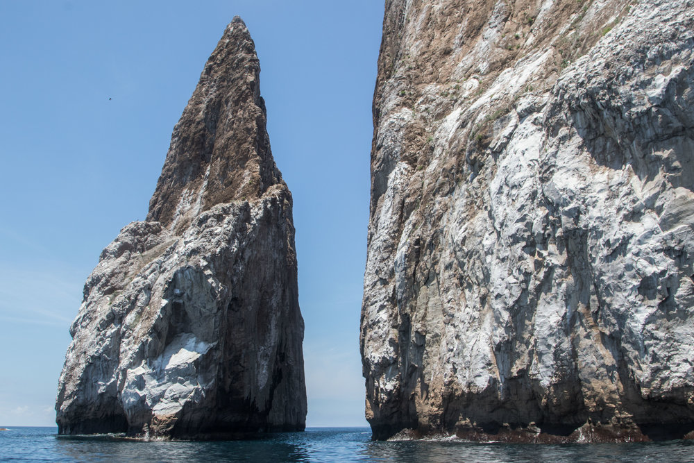 Galápagos-8042.jpg
