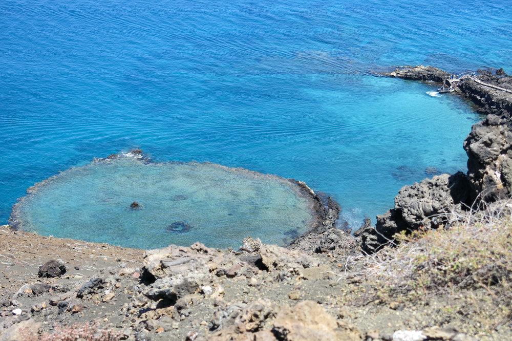 Galápagos-0381.jpg