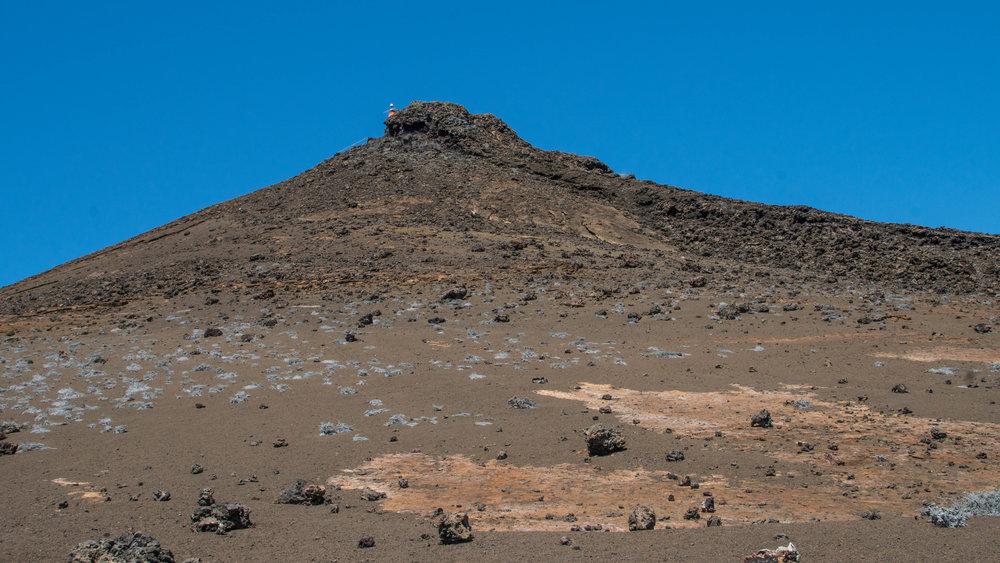 Galápagos-02959.jpg