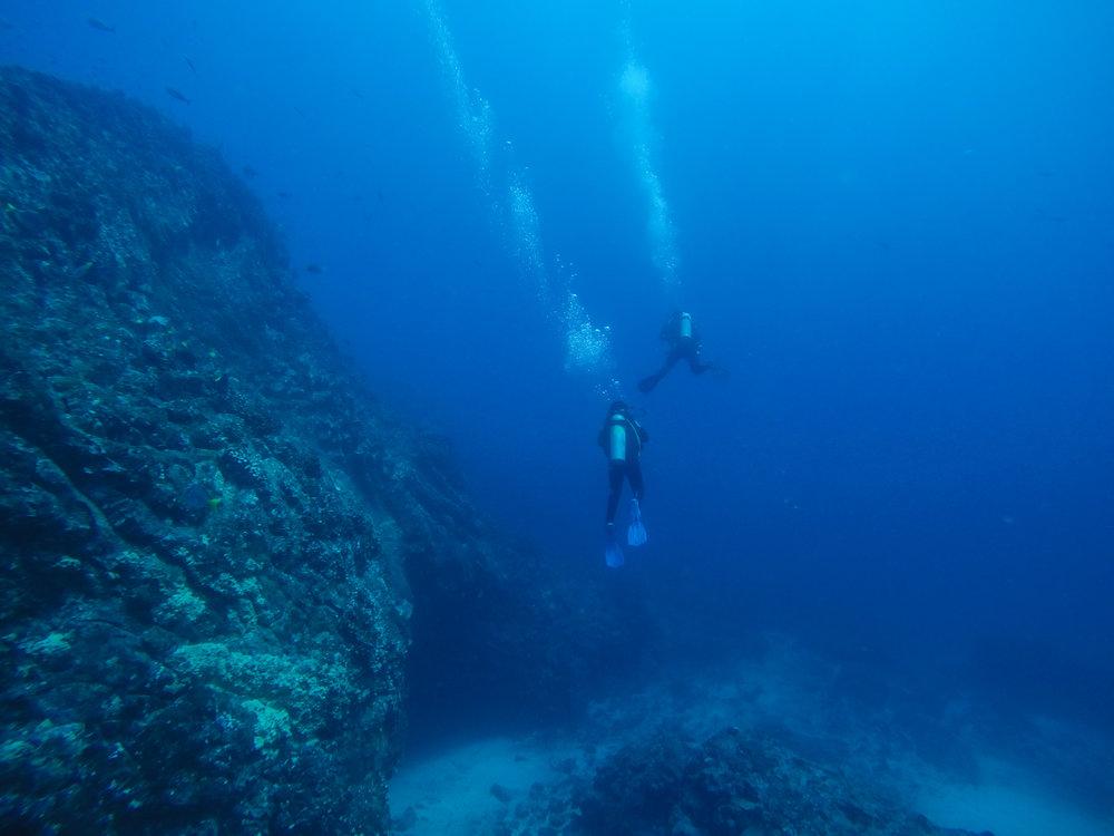 Galápagos-1515452.jpg