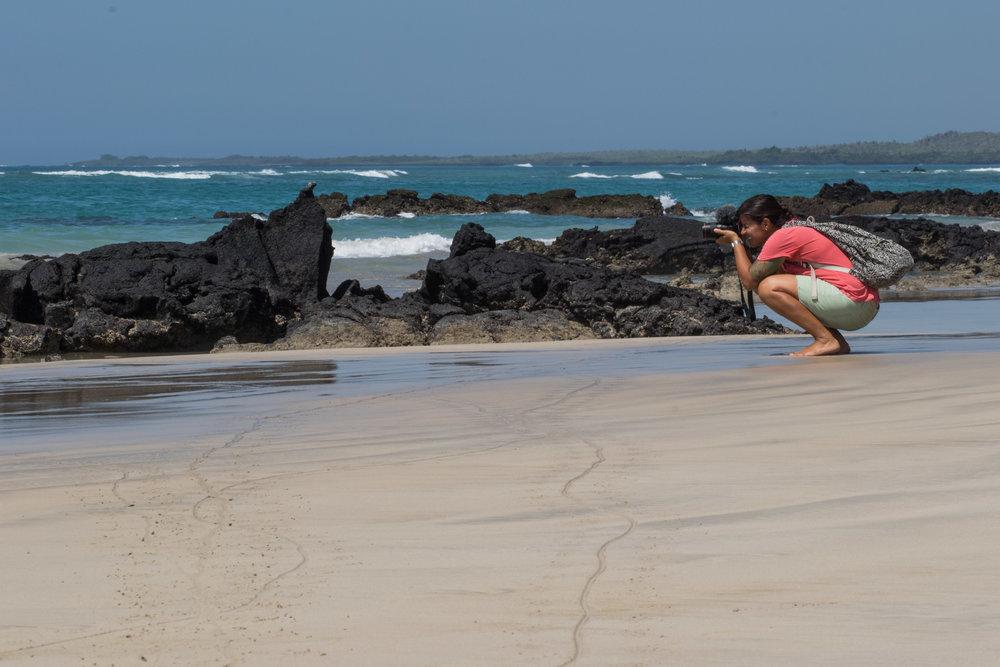 Making of da iguana.
