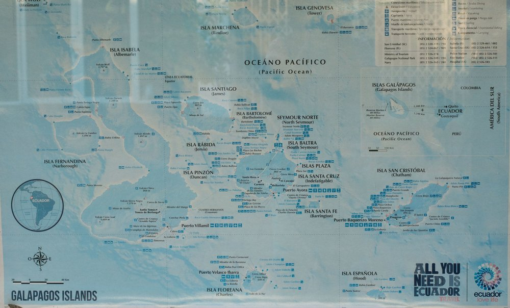 Galápagos-03155.jpg