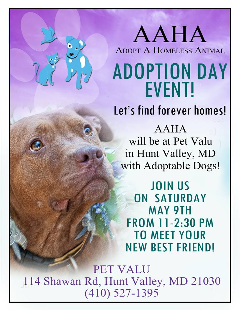 PetValu-may-9-15-flyer