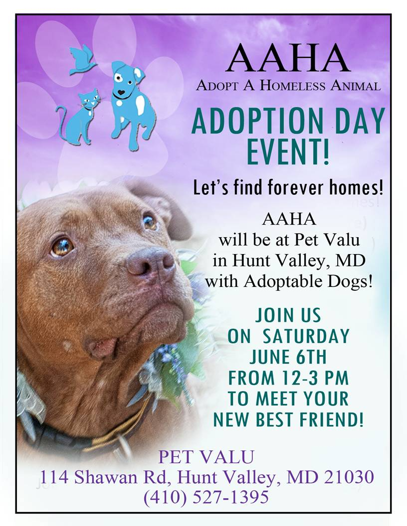 Pet-Valu-flyer-6-6-15