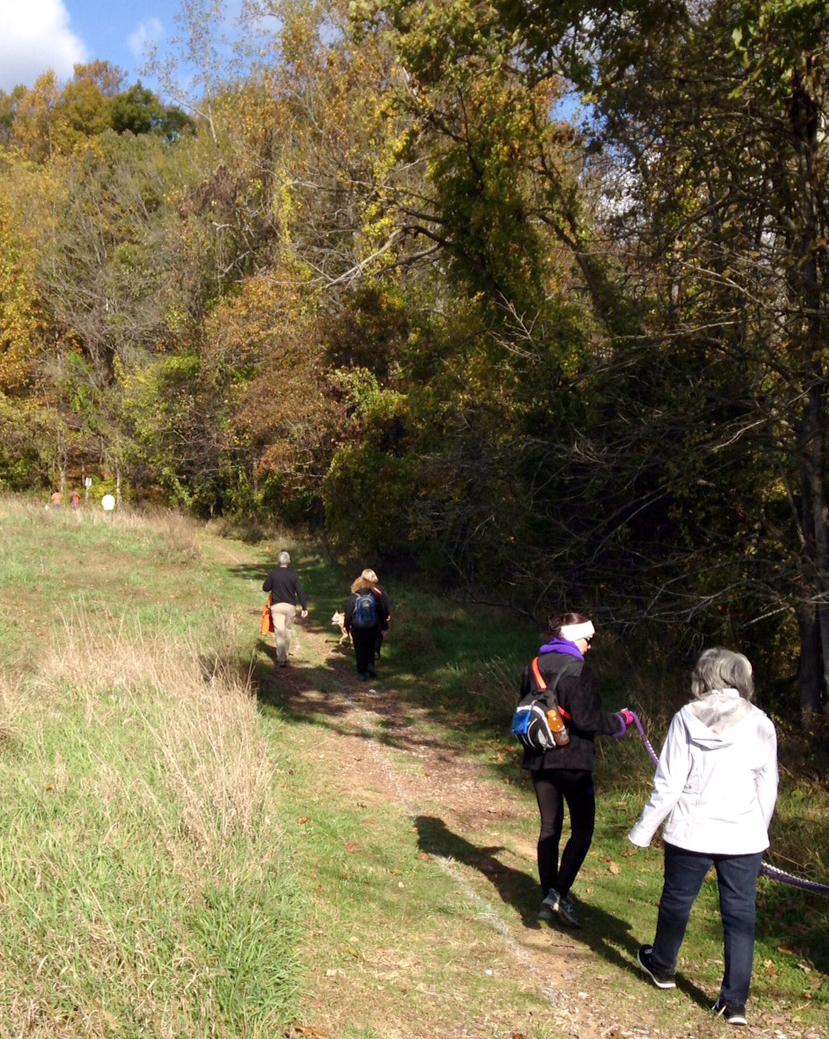 hike-path.jpg