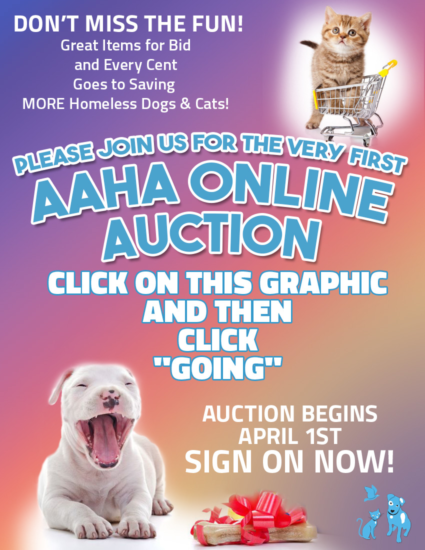Sign up on our Auction Event Page (via Facebook).