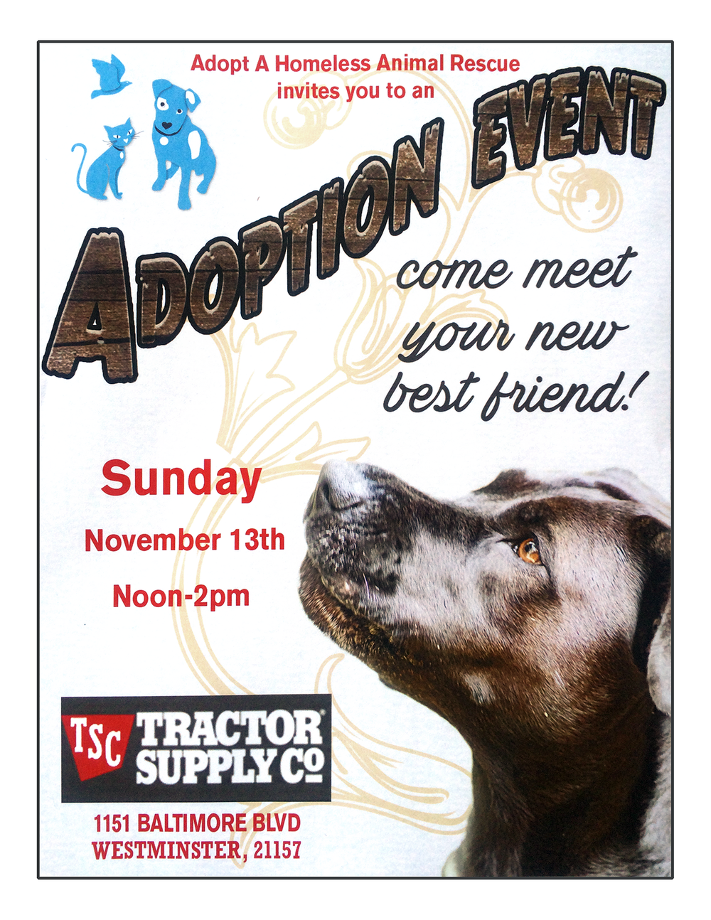TSC Tractor Supply Co Adoption Event Events Adopt A Homeless