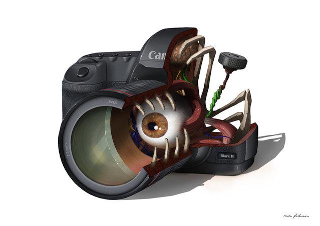 Camera anatomy