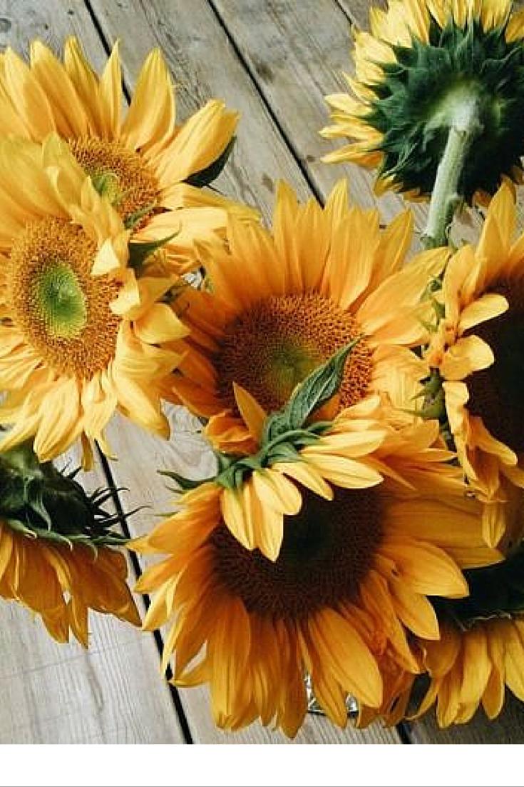 sneakers and pearls, sunflower arrangement, always trending