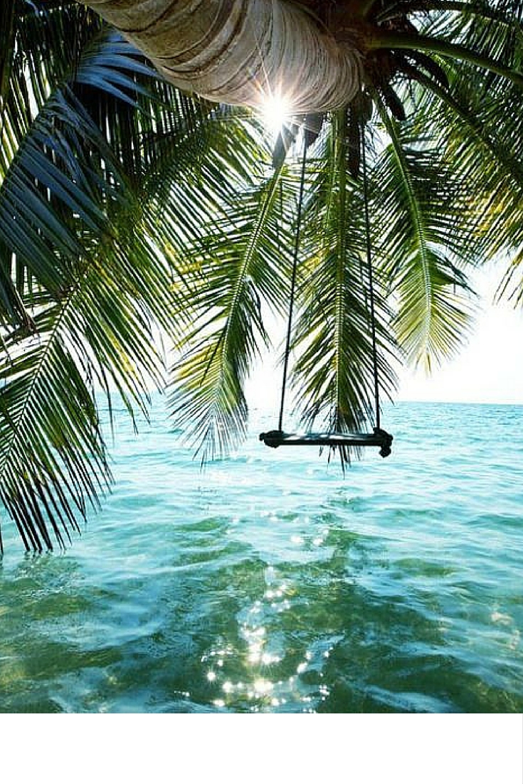 sneakers and pearls, holidays, summer, swing over the water, palm trees, trending now.jpg