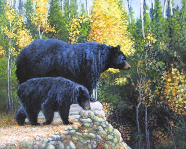Black Bear and Cub |   Charles Wallis