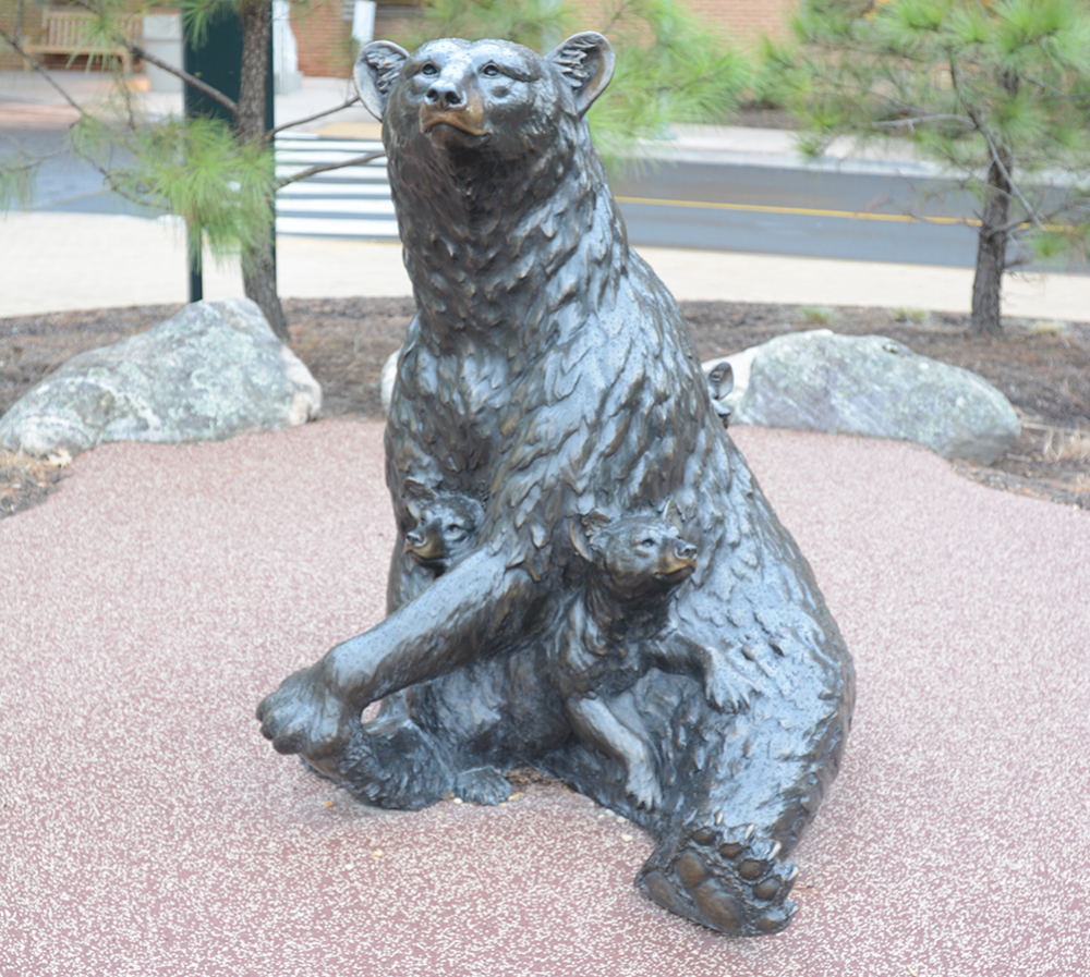black bear cubs horz.png