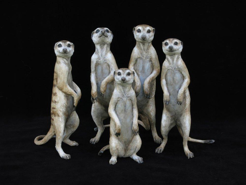 meerkats+.jpg