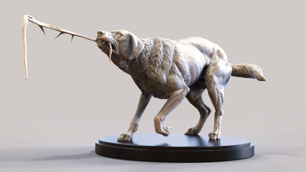 Image 12 - Dog Pulling.jpg