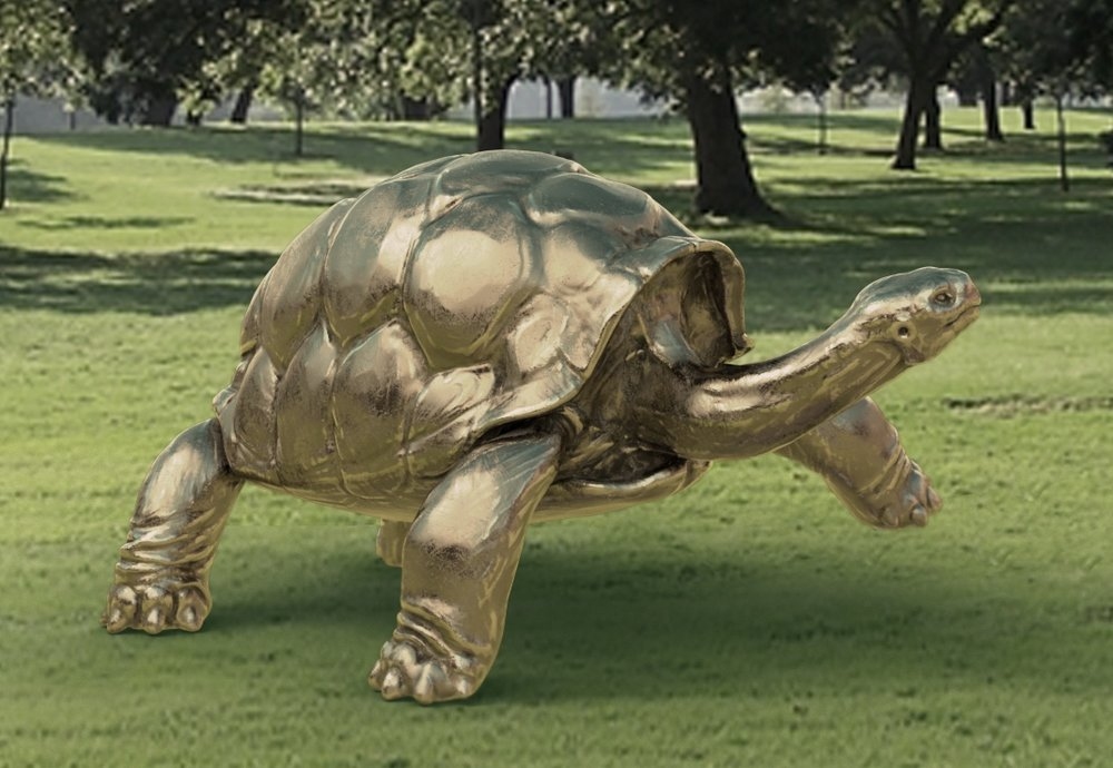 Image 3 - Concept Animal_ Galapagos Tortoise .jpg