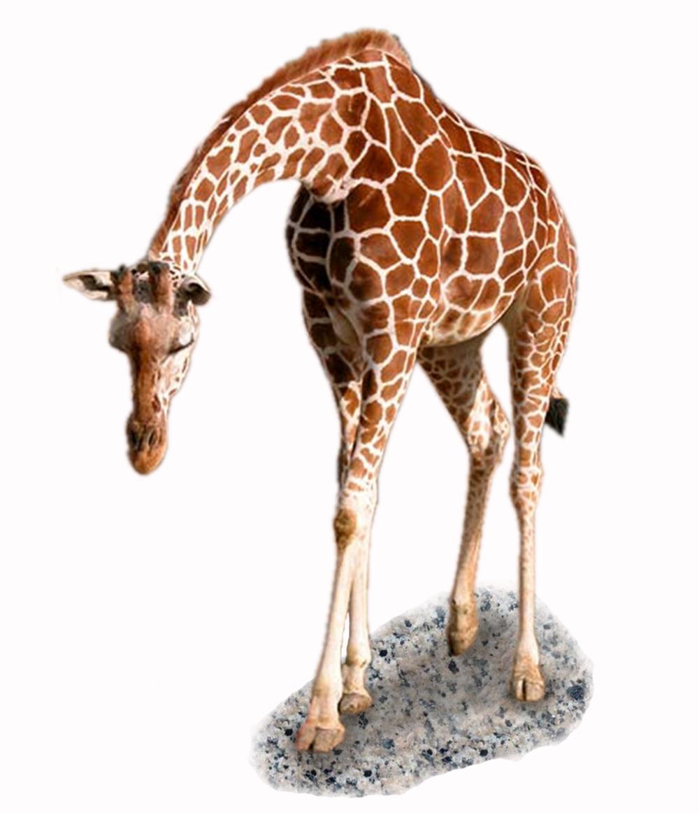 19. Giraffe.png