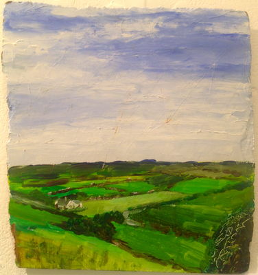 Cahermacrusheen Fields No. 9