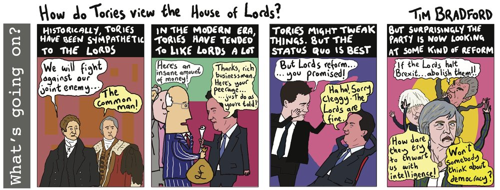 How do Tories view the House of Lords? - 26/02/17