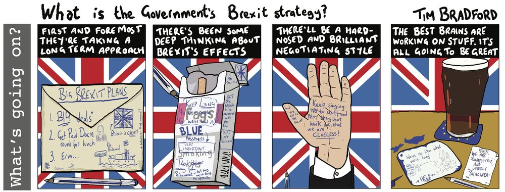 What is the Government's brexit strategy? - 21/04/17