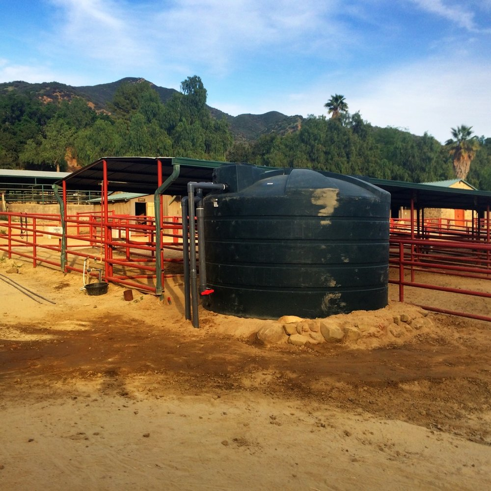 Rain tank installed for horse water